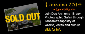 Tanzania 2014- 3 Spaces Remain